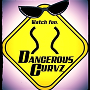Albuquerque, NM Cover Band | Dangerous Curvz