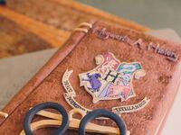 Harry Potter groom's cake idea