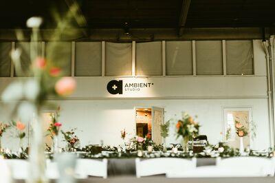 Ambient + Studio