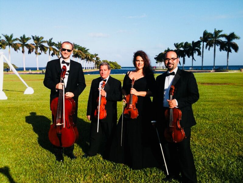 Eleganza Strings - String Quartet - Miami, FL