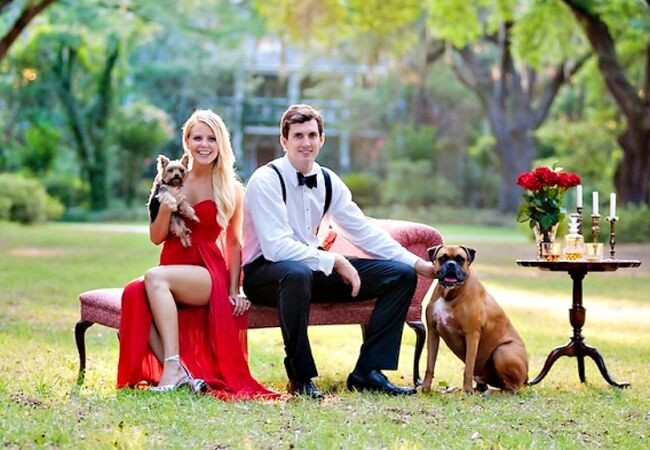 Engaged couple with Yorkie and Bulmastiff