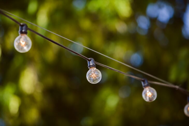 Elegant Globe Lightbulbs