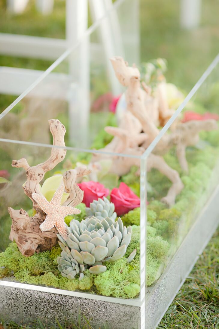 Terrarium-like vases filled with driftwood, moss, flowers, starfish and succulents lined the aisle.