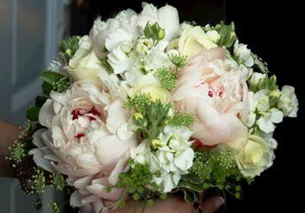 Amanda's Florist & Gifts