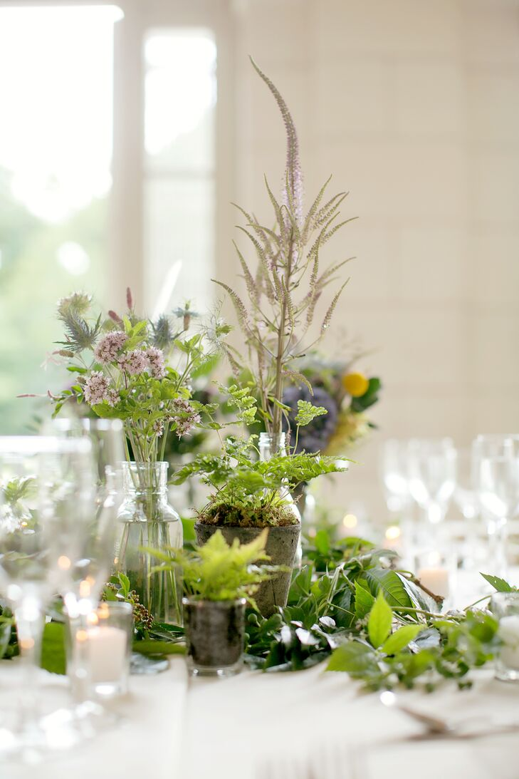 Simple Herbs and Greenery in Glass Jars