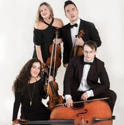 New York City, NY String Quartet | The Velveteen Ensemble