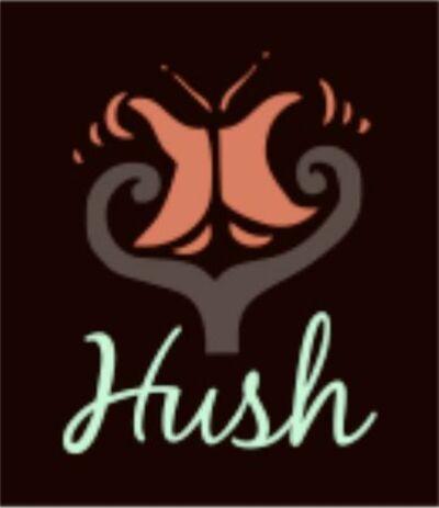 Hush Skin Care LLC