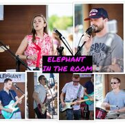 Waltham, MA Cover Band | Elephant In The Room