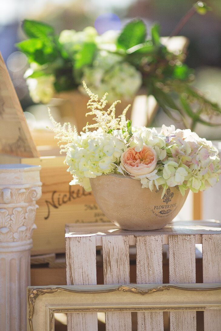 Blush Garden Rose and Ivory Hydrangea Accent