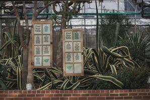 Antique Window Seating Charts at Greenhouse