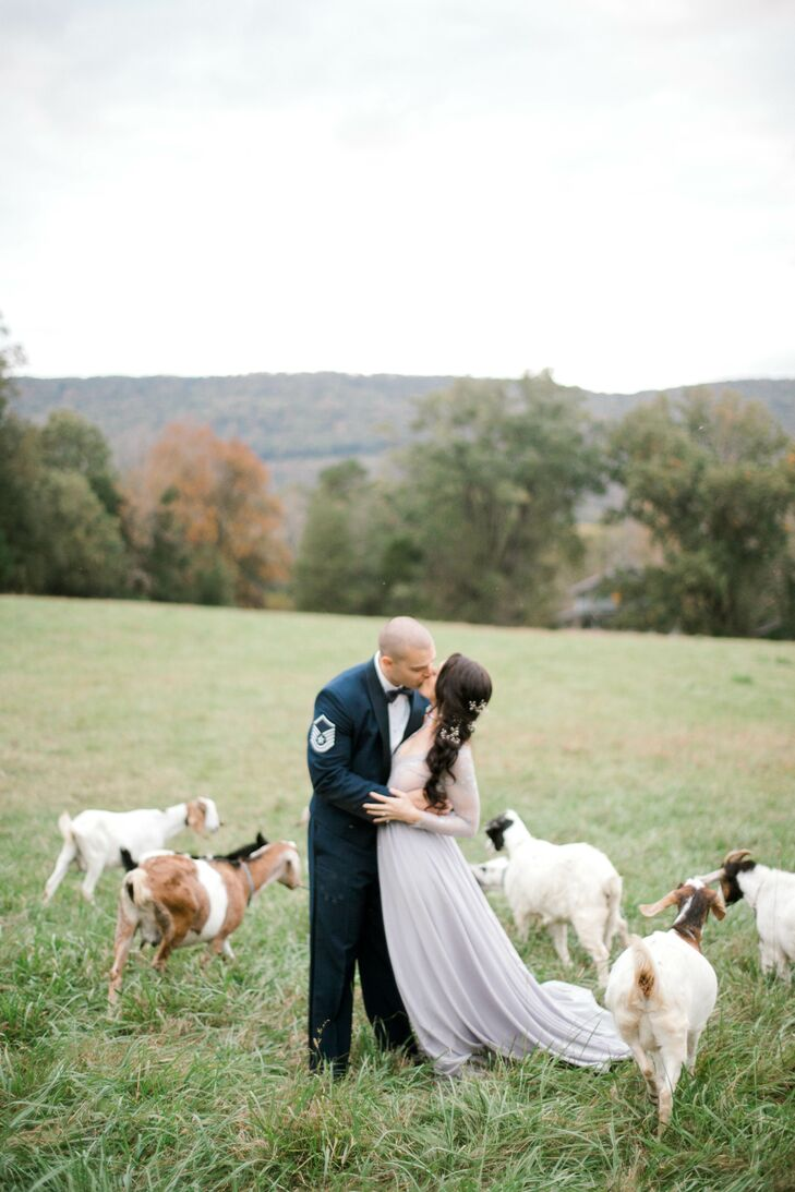 Couple Kissing in Rustic Field of Farm Animals