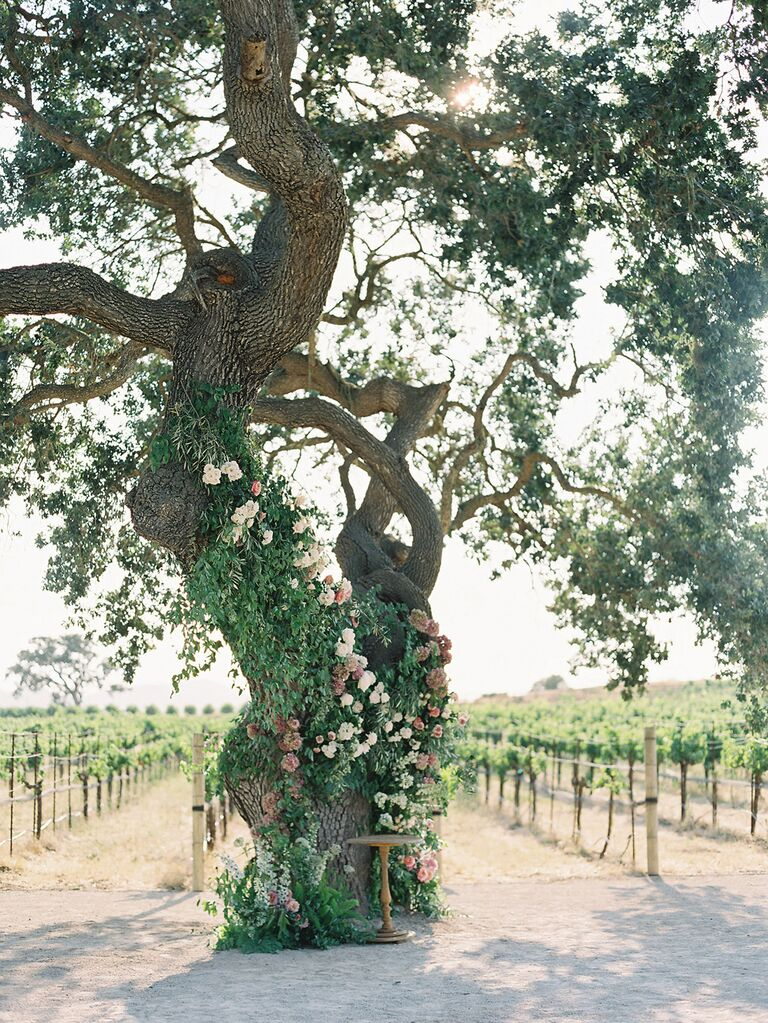 Can You Plan a Sustainable Vineyard Wedding?