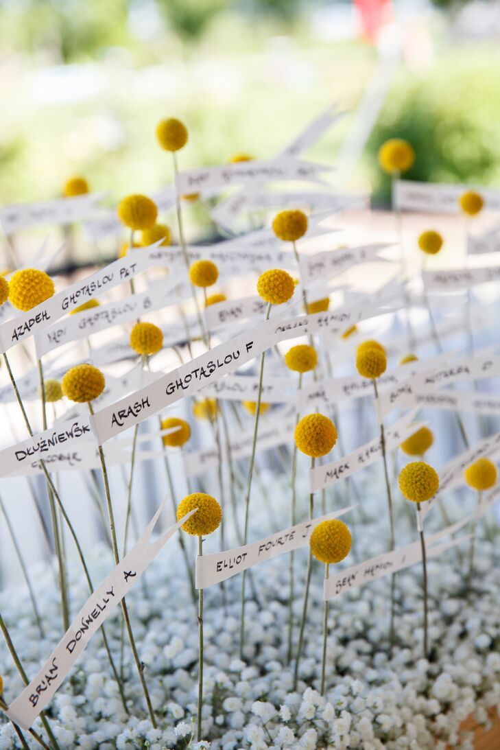 Yellow Craspedia Escort Cards