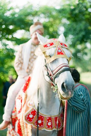 Groom's Baraat Entrance on Horse
