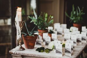 Escort Card Display with Potted Plants