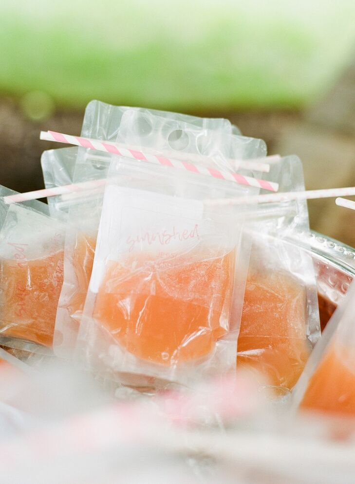 Cocktail Drink Pouches for Backyard Microwedding in Potomac, Maryland