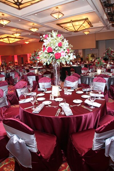 Lyndsey's Linens & Chair Covers