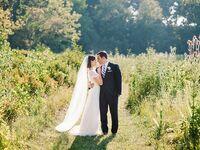 Bride with veil and groom in vineyard