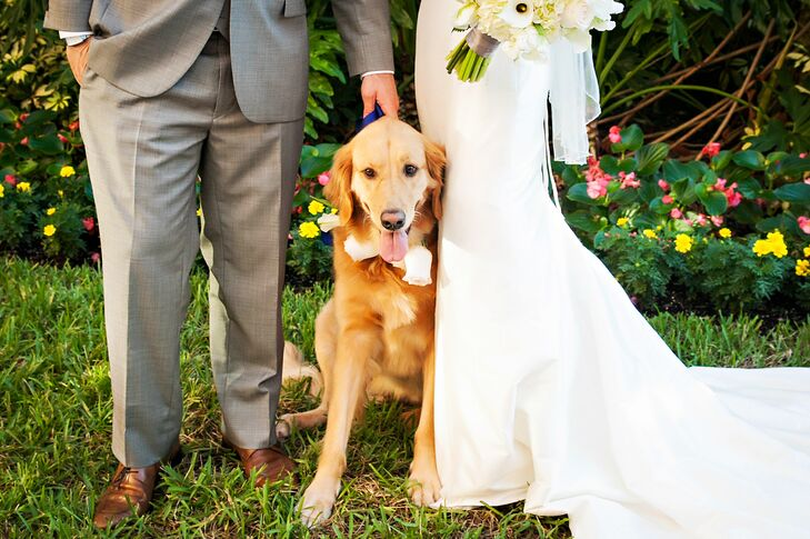 The couple's dog, Miss Henley, was featured in the wedding alongside her parents.