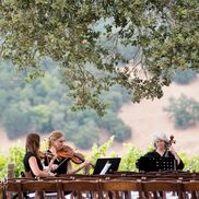 Martinez, CA String Quartet | Garden Strings