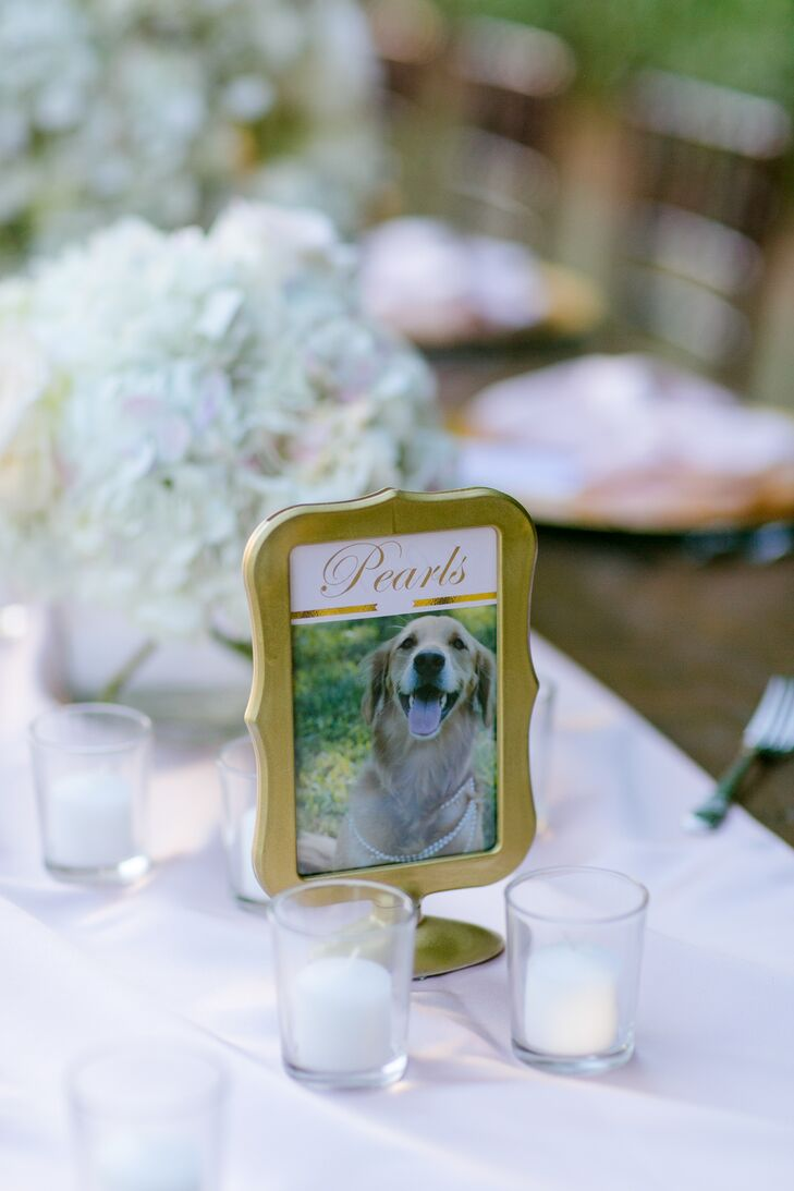 """Each and every table name represented a location, pet or item that was special to Lauren and Andy. They placed the memories in standing gold frames. """"All the guests commented on how much they loved all the personalization and thought we put into every single decoration,"""" Lauren says."""