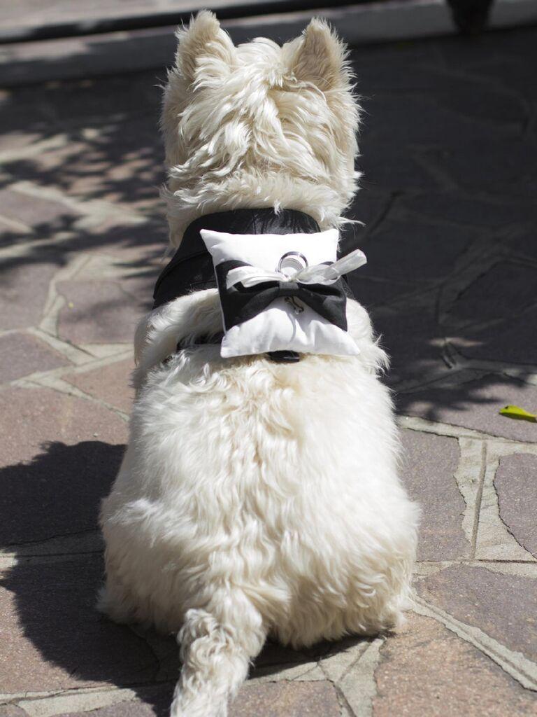 Dog ring bearer pillow