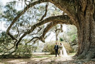 Wedding venues in north charleston sc the knot magnolia plantation and gardens junglespirit Choice Image