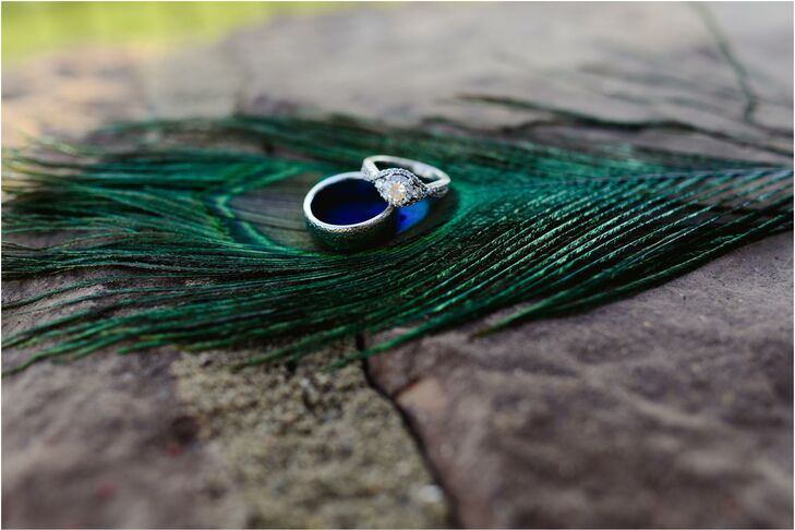 Wedding Rings On Peacock Feathers