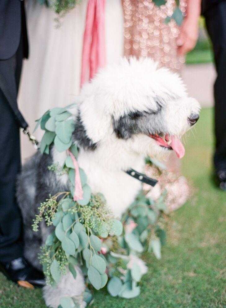 Old English Sheepdog Flower Girl with Eucalyptus