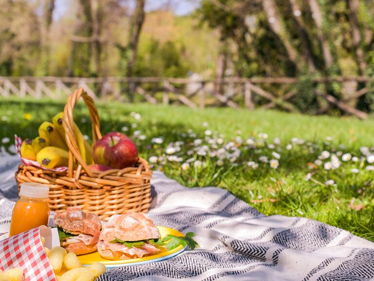 eco-friendly bridal shower park picnic