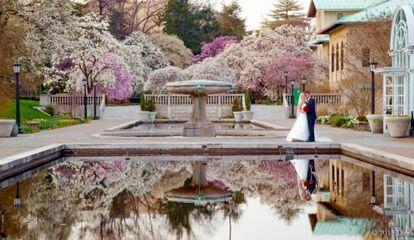 Patina Events At Brooklyn Botanic Garden Reception Venues