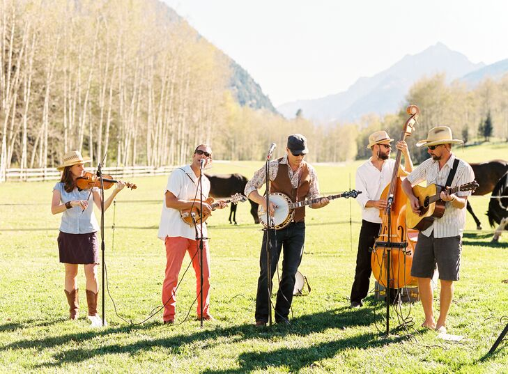 Live Bluegrass Band
