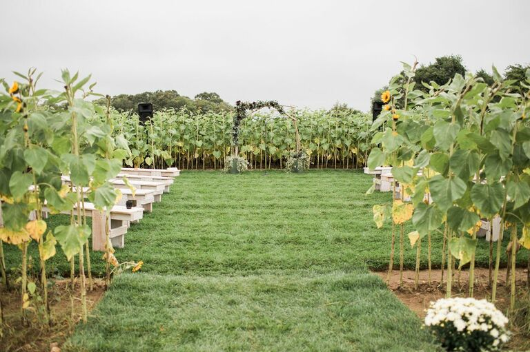 Ceremony in the middle of a sunflower field