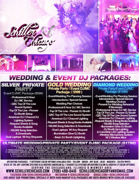 Schiller Chicago Wedding & Event DJS - Event DJ - Villa Park, IL