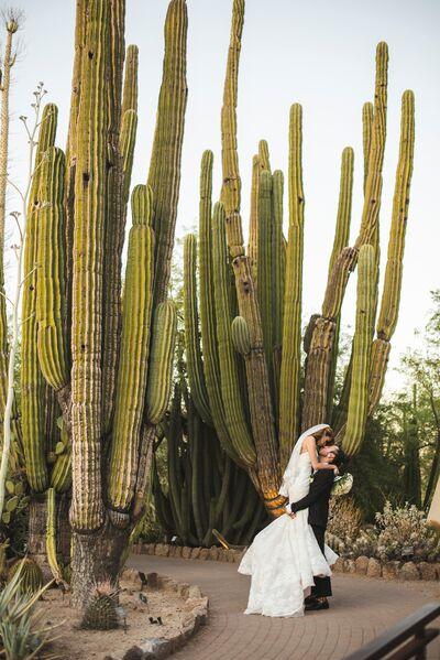 Desert Sage Wedding Photography