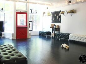 Sit Social: A Dog Lounge - Private Room - Chicago, IL