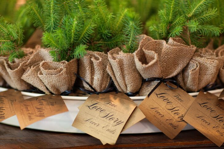 Pine Sapling Wedding Favors