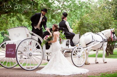 Fantasia Carriage, LLC