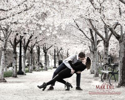 MarDel Photography & Design