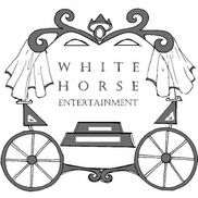 Tampa, FL Costumed Character | White Horse Entertainment