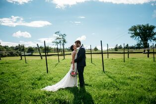 Wedding venues in burlington vt the knot honora winery vineyard junglespirit Gallery