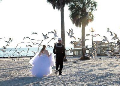 Plumeria Breezes Travel Honeymoon & Destination Wedding