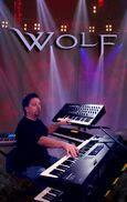 Evansville, IN Pink Floyd Tribute Band | Robert A. Wolf
