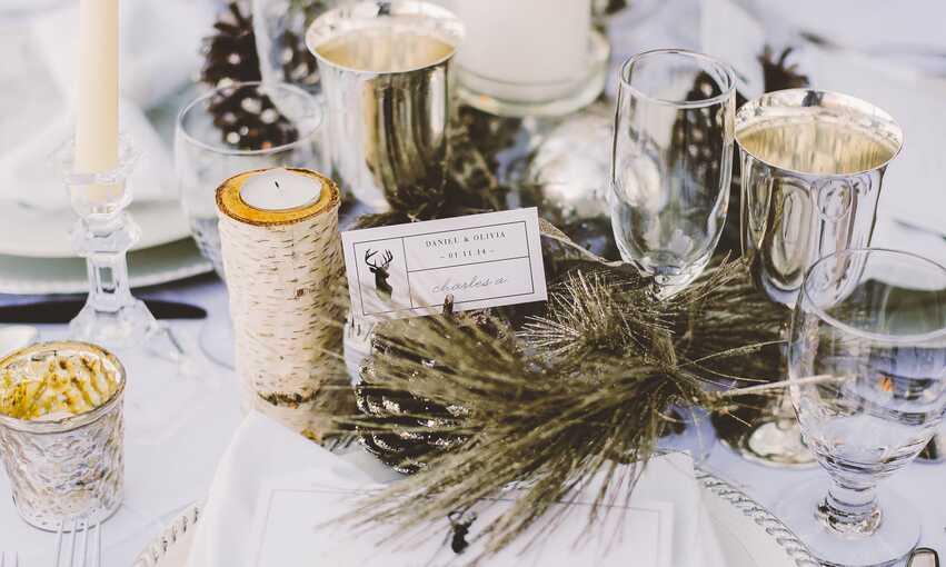 Winter Wonderland party themed inspiration and ideas