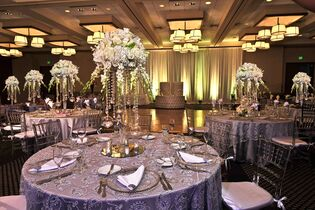 Wedding venues in miami fl the knot doubletree by hilton miami airport convention center junglespirit Choice Image