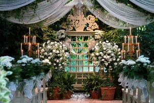 Wedding reception venues in st louis mo the knot the conservatory tropical gardenhouse weddings junglespirit Images