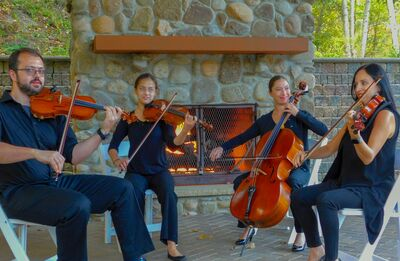 Buffalo Heartstrings Quartet