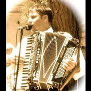 San Diego, CA Harp | Doron Peisic Accordion / Harp