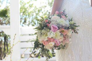 Becks silk plant company denver co palmer flowers loveland mightylinksfo