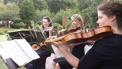 Arreaux Strings